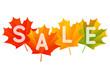 Autumn sale concept for Your design