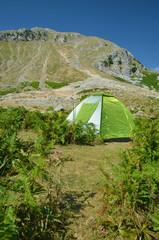 mountain camping - green tent
