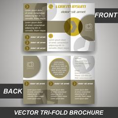 Tri fold corporate business store brochure, cover design