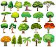 Set of trees