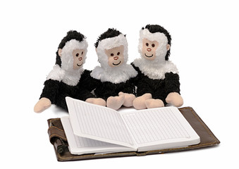 toy monkeys with the book