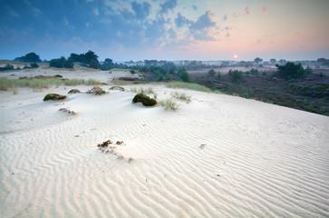 sunrise over sand dunes and heather