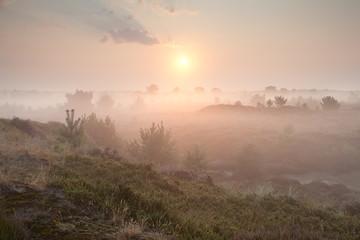gold  misty sunrise over hills