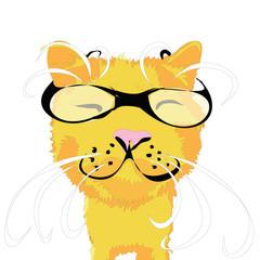 прикольный кот в очках