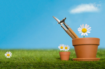 Potting Tools on Grass with Daisies