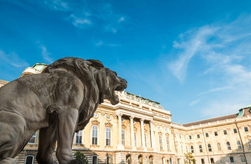 Lion courtyard in Budapest Hungary