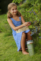 Summer girl - beautiful girl  picking blueberries