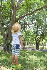 森林と子供