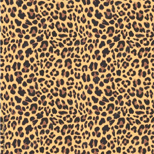 Leopard seamless pattern design, vector illustration background - 68677291