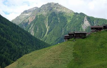 Heuernte am steilen Hang in Südtirol