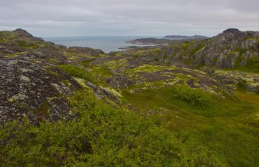The Barents sea, Murmansk region, Russia