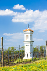 God's torture with vineyard near Palava, Czech Republic