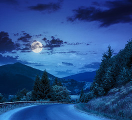 going to forest in mountains at night