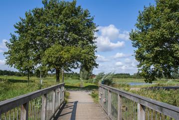 Landscape - wooden bridge on a sunny day