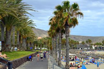 Paseo entre palmeras. Playa de las Vistas. Tenerife