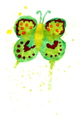 Green Watercolor Butterfly