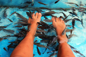 Fish Spa Skin Treatment in thailand