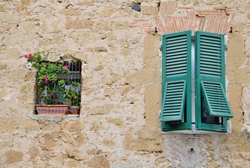 Colourful flowers and window