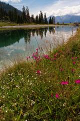 Kaltwassersee ©yvonneweis