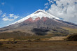 View of the majestic Cotopaxi volcano - 68695007