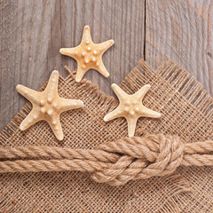 starfish on a background of old cloth