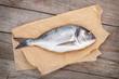 canvas print picture - Fresh dorada fish