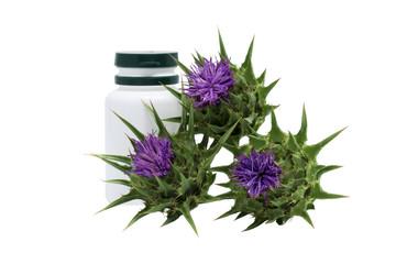 Milk thistle ( Silybum marianum ) with medical flask