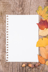 Sheet of paper and autumn leaves on wooden background
