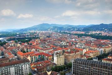 Torino panorama