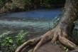 Réserve naturel Rio Celeste, Costa Rica