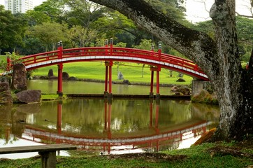 Japanese Gardens red bridge and reflection in pond with tree