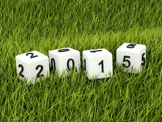 Green 2015 New Year sign on grass