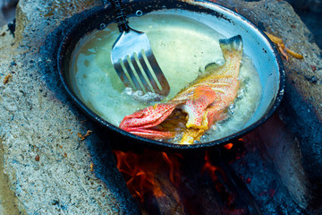 Red snapper fish in pan with oil