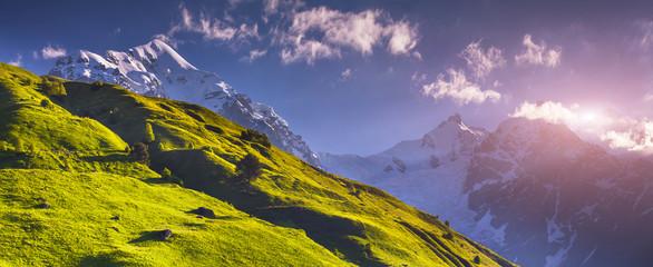 Panorama of alpine meadows at the foot of Tetnuldi glacier