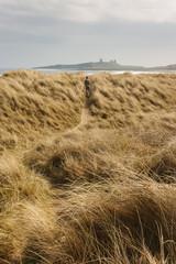 man walking across grassy sand dunes