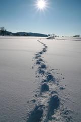 spuren von menschen im schnee