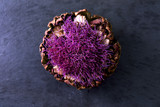 Purple Flowering Artichoke - 68714827