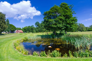Typical Swedish water pond on the golf course