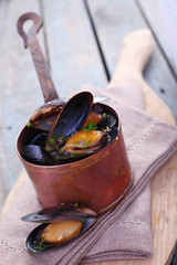 Freshly steamed marine mussels in a copper pot