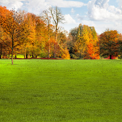 Autumn landscape with trees and lawn in the foreground.