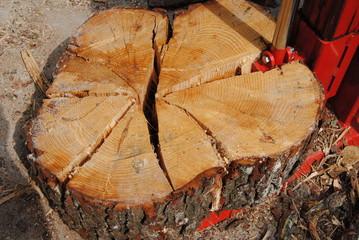 fendre le bois