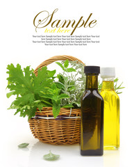 Fresh herbs in wicker basket, essential oils and herbal essences
