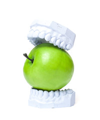 Plaster cast of teeth with green apple