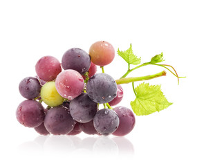 Dark grapes Isolated on white background