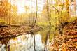 Bach im Herbstlicht – Weserbergland