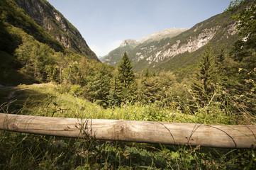 Montagna d'estate