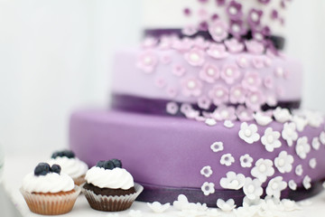 Wedding sweets, blueberry cake