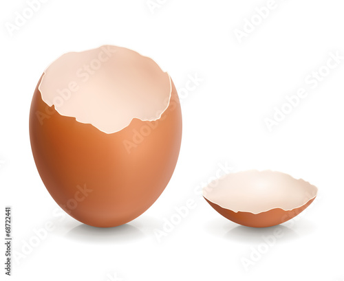 Eggshell, vector illustration - 68722441