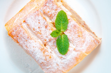slice of apple strudel on the plate