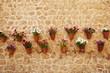 canvas print picture - hängende Blumentöpfe am Mauer